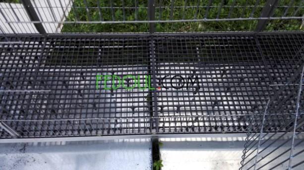 cages-pour-animaux-big-8