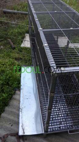 cages-pour-animaux-big-5