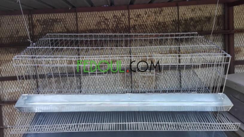cages-pour-animaux-big-1