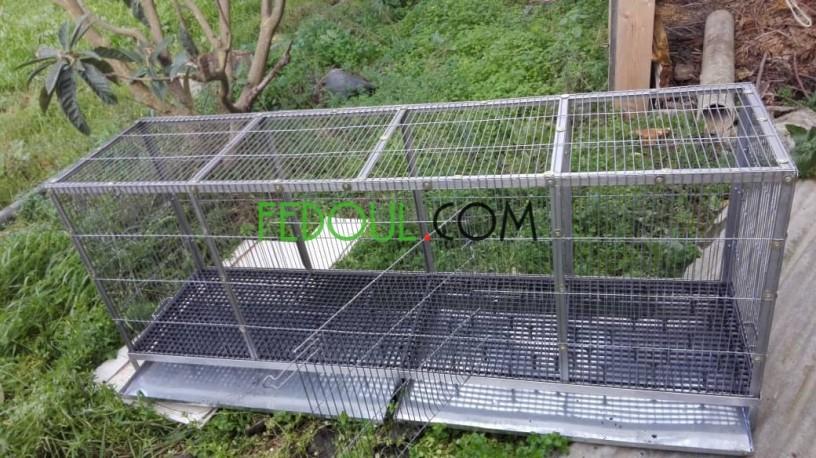 cages-pour-animaux-big-11