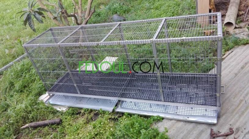 cages-pour-animaux-big-10
