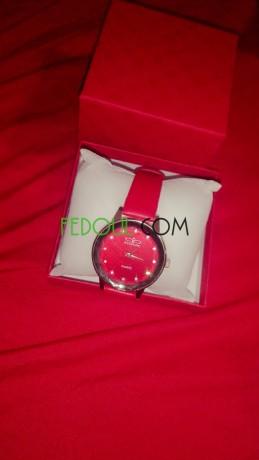 des-montres-de-luxe-big-5
