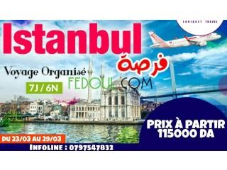 Voyage organisé a Istanbul