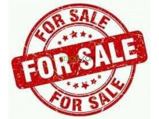 Chaussure à vendre (Nike Air 27C)